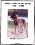 Belgian Malinois Champions, 1996-2002 book written by Jan Linzy