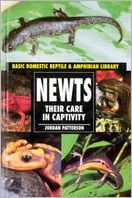 Newts: Their Care in Captivity book written by Jordan Patterson