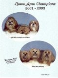 Lhasa Apso Champions, 2001-2003 book written by Jan Linzy