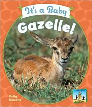It's a Baby Gazelle! book written by Kelly Doudna