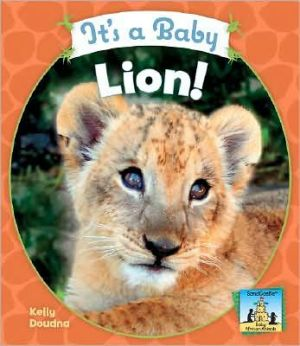 It's a Baby Lion! book written by Kelly Doudna