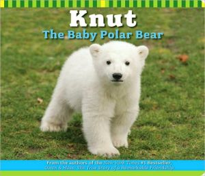 Knut the Baby Polar Bear book written by Craig Hatkoff