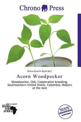 Acorn Woodpecker written by Pollux Variste Kjeld
