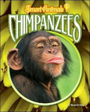 Chimpanzees book written by Margaret Fetty