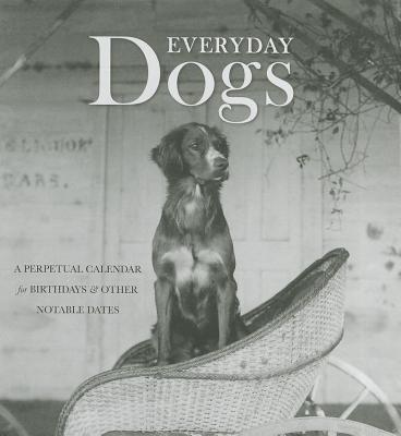 Everyday Dogs book written by Mary Scott