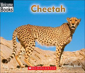 Cheetah book written by Edana Eckart