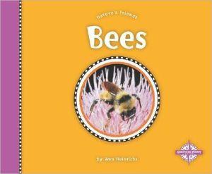Bees book written by Ann Heinrichs