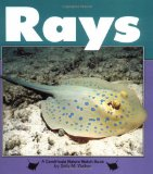 Rays book written by Sally M. Walker