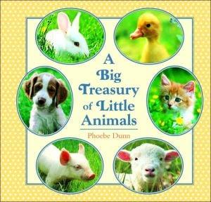 Big Treasury of Little Animals book written by Phoebe Dunn