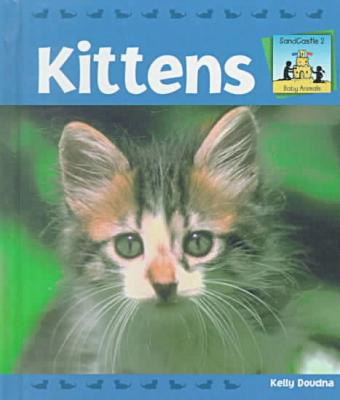 Kittens book written by Kelly Doudna