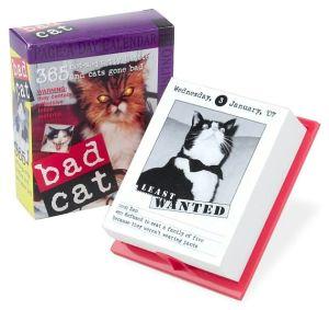 Bad Cat 2007 Calendar book written by Workman Publishing Company