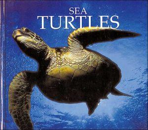 Sea Turtles book written by Don Patton