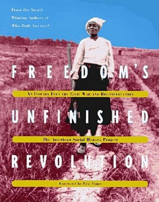 Freedom's Unfinished Revolution book written by American Social History Project