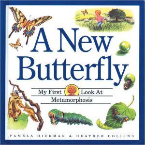 A New Butterfly book written by Pamela Hickman