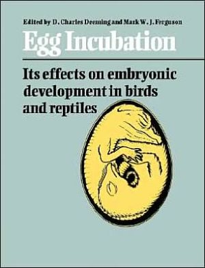 Egg Incubation: Its Effects on Embryonic Development in Birds and Reptiles book written by Denis Charles Deeming