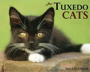 2011 Tuxedo Cats Wall Calendar book written by Willow Creek Press, Incorporated