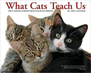 2011 What Cats Teach Us Wall Calendar book written by Willow Creek Press, Incorporated