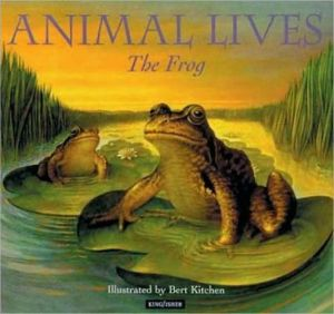 Frog book written by Sally Tagholm