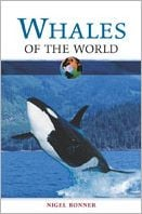 Whales of the World book written by W. Nigel Bonner