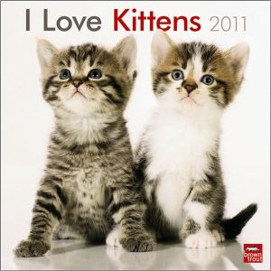 2011 Kittens, I Love Square Wall Calendar book written by BrownTrout Publishers