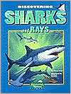 Discovering Sharks and Rays book written by Nancy Field