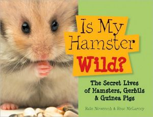 Is My Hamster Wild? book written by Rain Newcomb