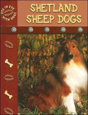 Shetland Sheepdogs book written by Lynn M. Stone
