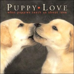 Puppy Love: What Puppies Teach Us About Love book written by Willow Creek Press