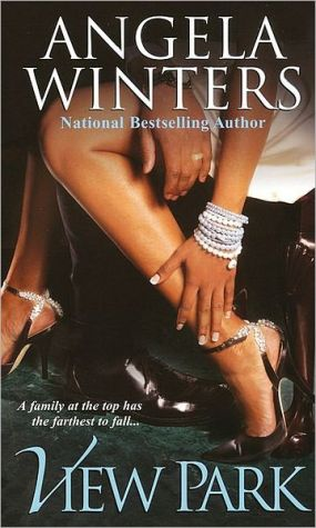 View Park (View Park Series #1) book written by Angela Winters