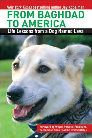 From Baghdad to America: Life Lessons from a Dog Named Lava book written by Jay Kopelman