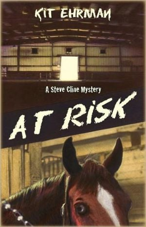 At Risk book written by Kit Ehrman