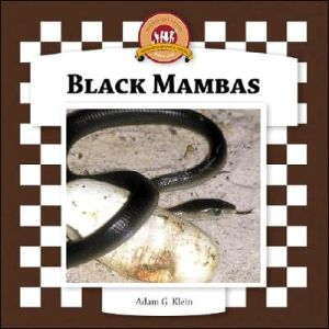 Black Mambas book written by Adam Klein