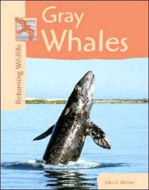 Gray Whales book written by John Becker
