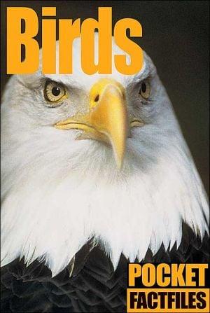 Pocket Factfiles Birds book written by Andromeda, Adam Ward