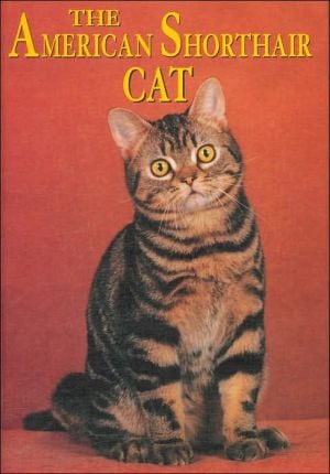 The American Shorthair Cat (Learning about Cats Series) book written by Joanne Mattern