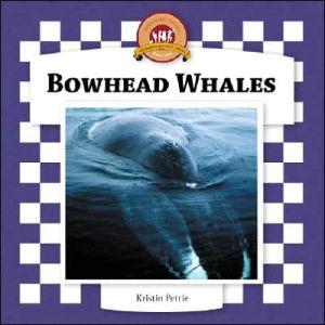 Bowhead Whales book written by Kristin Petrie