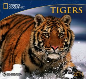 2011 National Geographic Tigers Wall Calendar book written by National Geographic Society