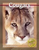 Cougars book written by Anne Welsbacher