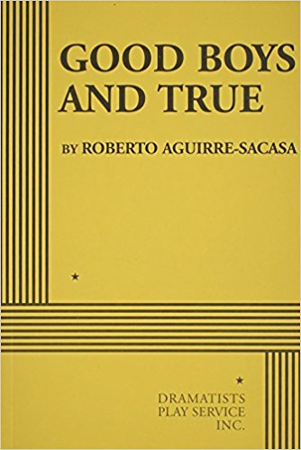 Good Boys and True book written by Roberto Aguirre-Sacasa