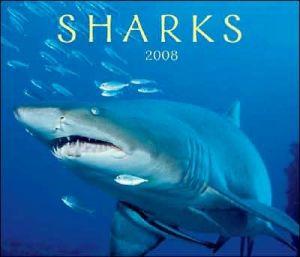 Sharks 2008 Calendar book written by Firefly Books