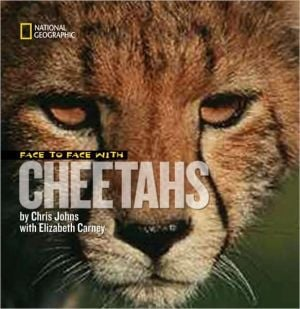 Face to Face with Cheetahs book written by Elizabeth Carney