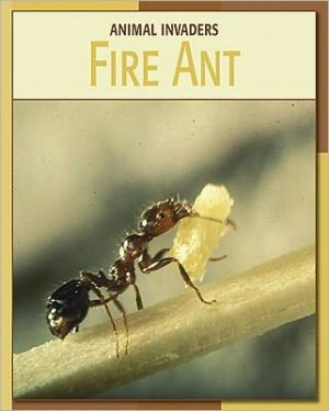 Fire Ant book written by Barbara Somervill