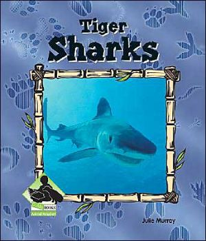 Tiger Sharks book written by Julie Murray