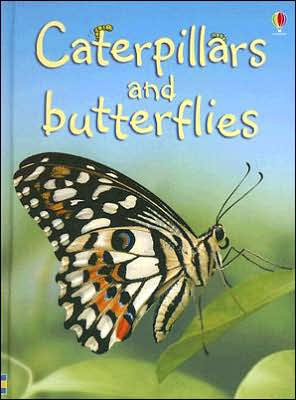 Caterpillars and Butterflies - Internet Referenced (Level 1) book written by Stephanie Turnbull
