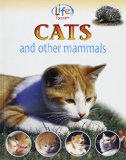 Cats and Other Mammals book written by Sally Morgan