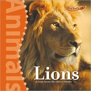 Lions book written by Susan Schafer