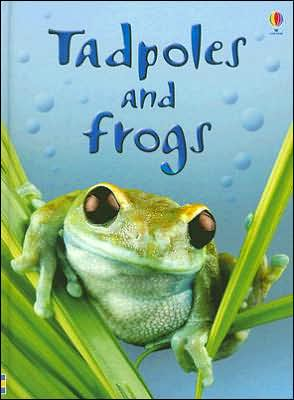 Tadpoles and Frogs book written by Anna Milbourne