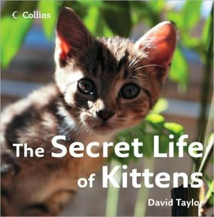 The Secret Life of Kittens book written by David A. Taylor