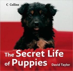 The Secret Life of Puppies book written by David Taylor