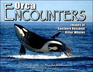 Orca Encounters: Images of Southern Resident Killer Whales book written by Monika Wieland